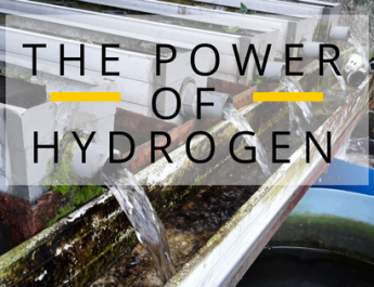 The Power of Hydrogen