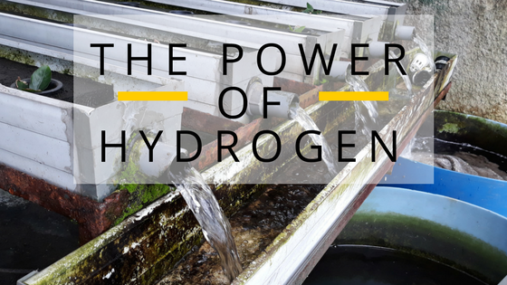 the-power-of-hydrogen